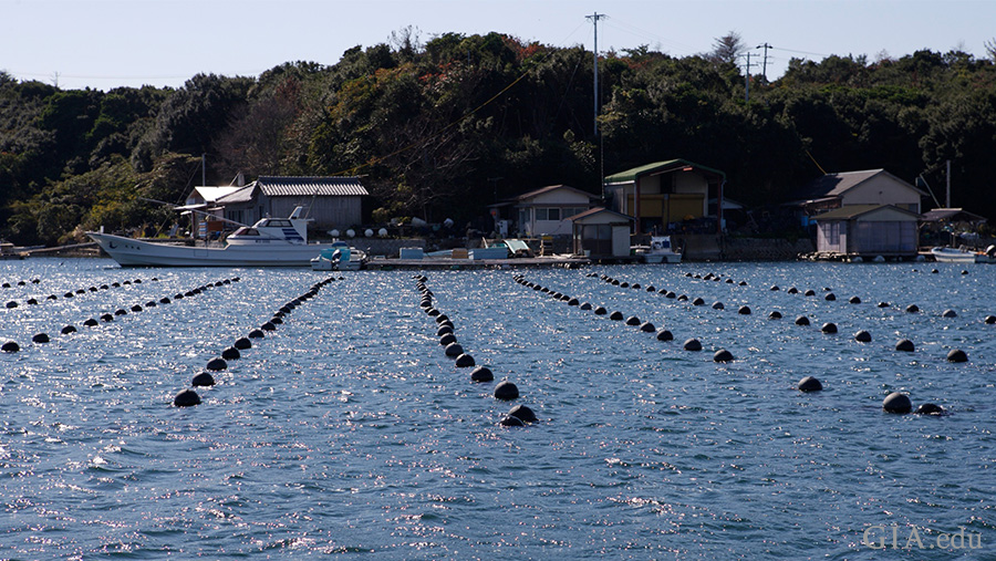 Ago Bay, Japan is one of the most important sites for akoya cultured pearl farms. Photo: Valerie Power/GIA