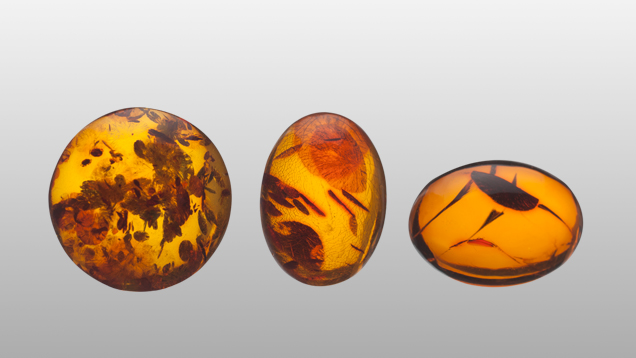 Heat treated amber