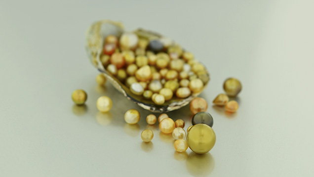 Pipi pearls from French Polynesia