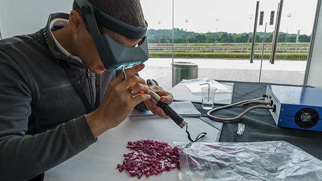 Buyer evaluates rough ruby
