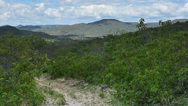 Pedra Bonita(佩德拉博尼塔)锰铝榴石柘榴石矿