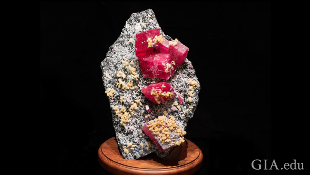 A mineral specimen with five large cherry red crystals of rhodochrosite sits on a wooden base.