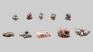 天然真珠凝集体のルース