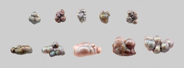 未串的天然珍珠聚合物