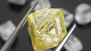 从 34.11 ctw 的白色八面体钻石前钳起的 17.88 克拉黄钻。 这些钻石来自莱索托的 Kao 矿。