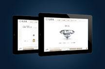 Timeline Event 2011 216x142 iPad