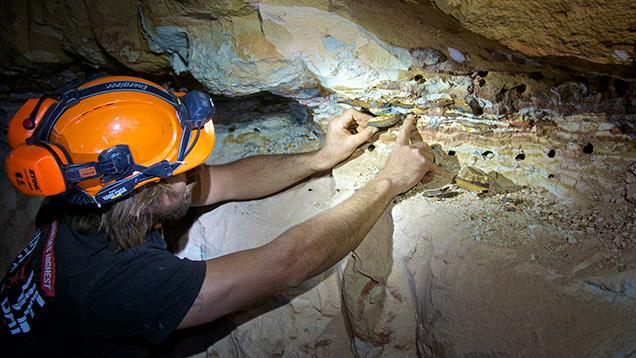 地下鉱山でオパールの鉱脈を指さす男性