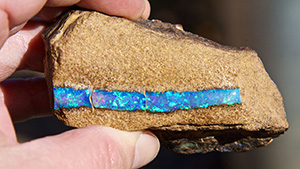 Hand holding tube-shaped boulder opal