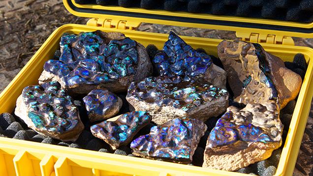 Case of boulder opal