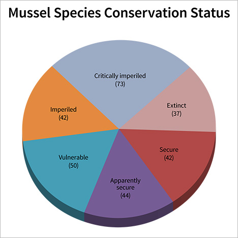 Pie chart of mussel species conservation status