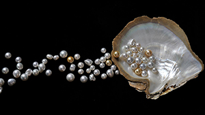 Pearls with Oyster Shell