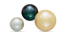 Graduate Pearls Program