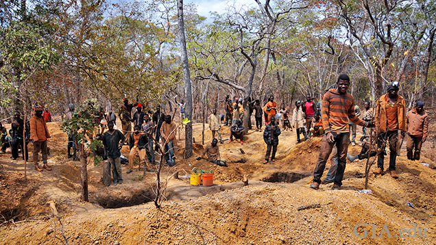 A large group of miners work around small digs.