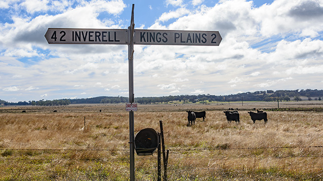 Traffic sign pointing to Kings Plains and the town of Inverell