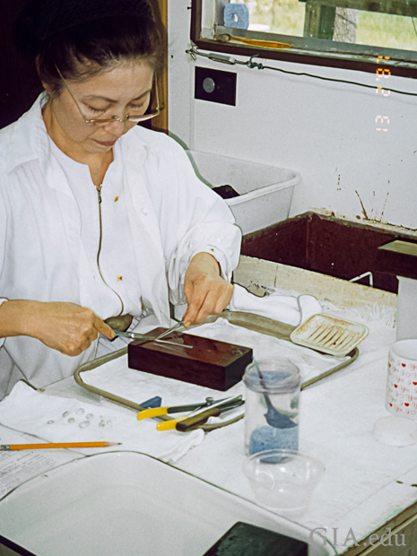 Woman cutting mantle tissue