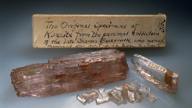 This photograph shows Charles Baskerville's historic collection of kunzite crystals. - Wendell Wilson