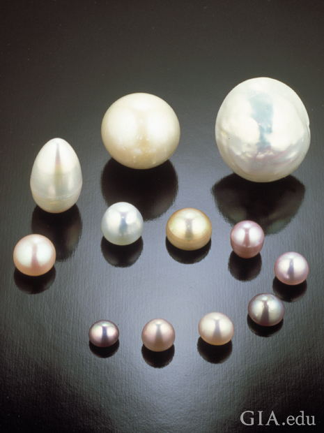 12 natural pearls of a range of sizes