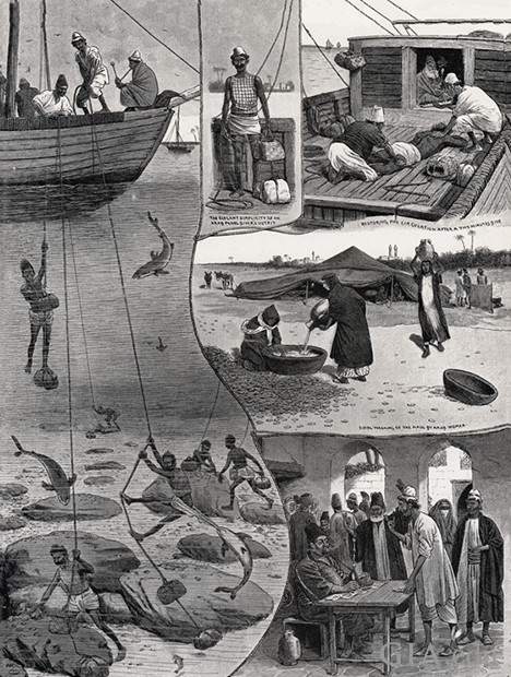 Drawing showing various scenes of ancient pearl diving techniques.