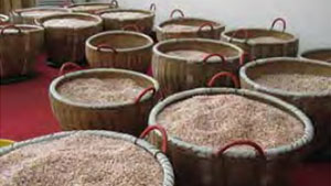 中国の淡水養殖真珠