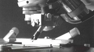 スリランカ産出の無色、イエロー及びブルーサファイア内の三相インクルージョン検査