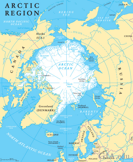 A flat map of the arctic region