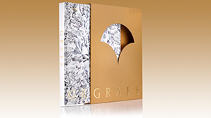 Book Review: Graff Book Cover