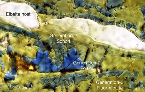 Chemical zones in a tourmaline fiber