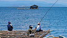 Pearl farm on the Indonesian island of Lombok