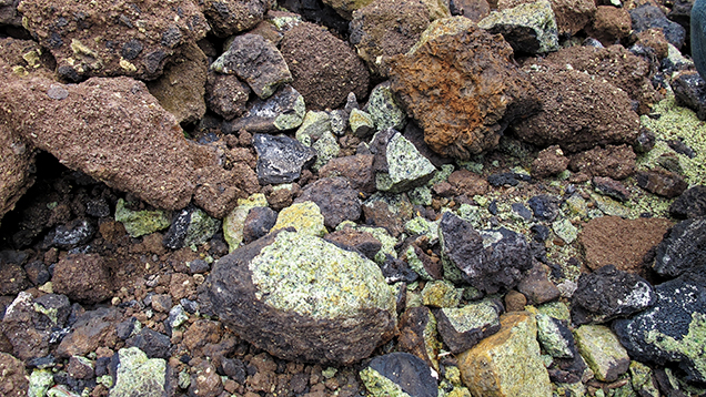 Peridot-bearing nodules from Vietnam