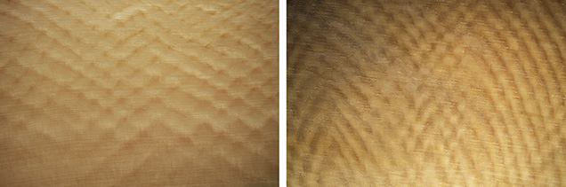 Schreger lines observed in elephant ivory (left) and mammoth ivory (right).