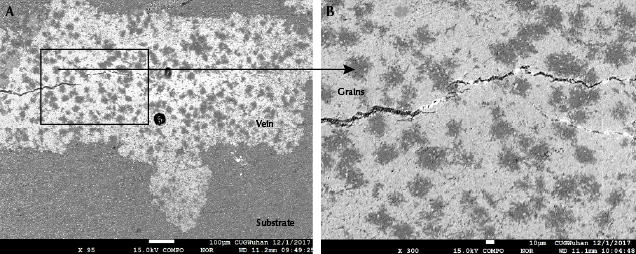 """Backscattered electron imaging of grains in """"raindrop"""" turquoise"""