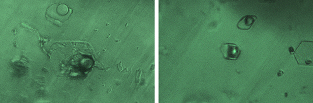 Three-phase inclusions in Swat emerald