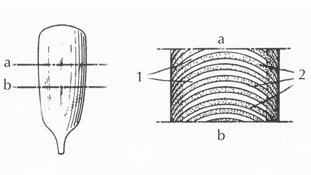 Drawings of Verneuil-grown synthetic sapphire boule from 1954 patent