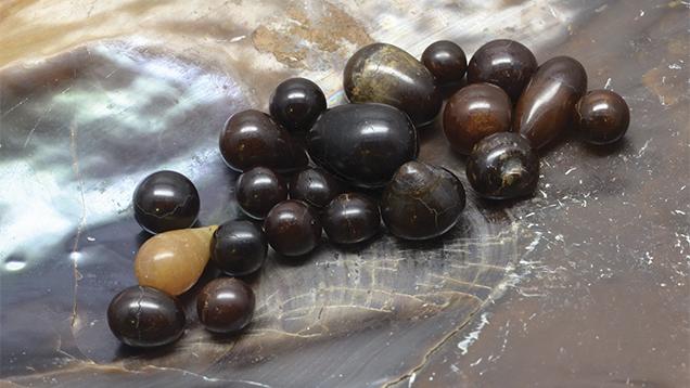 Non-nacreous Pen Pearls