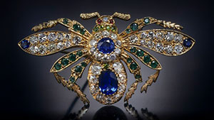 A view from behind of a bejeweled winged insect.