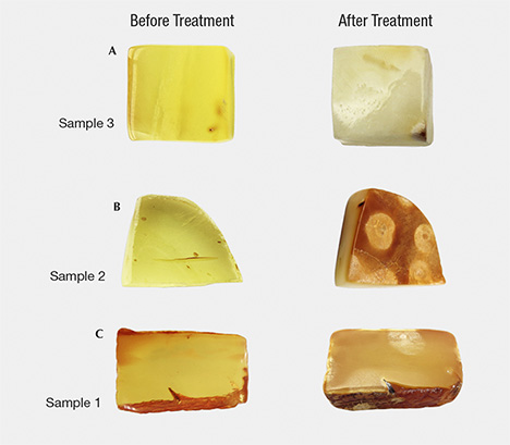 Amber samples before and after hydrothermal treatment