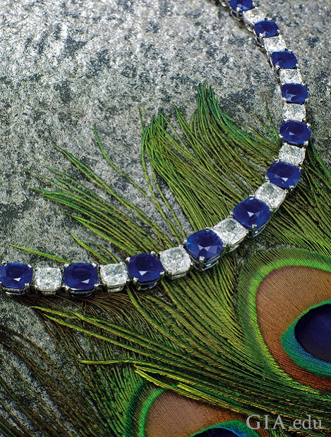 A necklace of cushion cut sapphires and diamonds lies on top of peacock feathers.