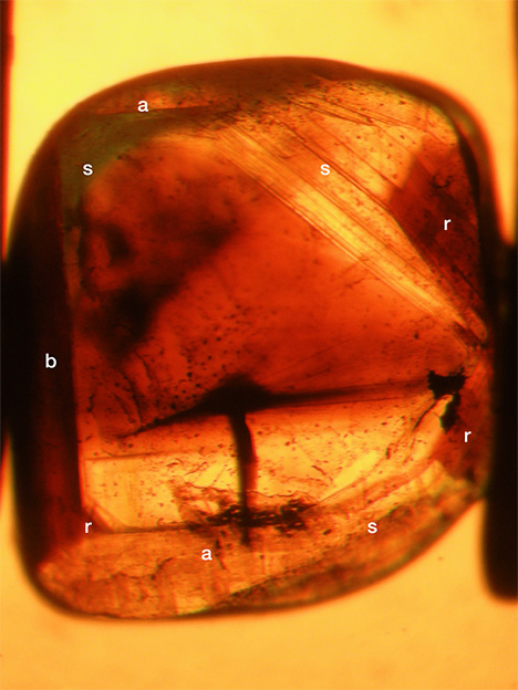 View in immersion of growth zoning and color zoning in a chrysoberyl
