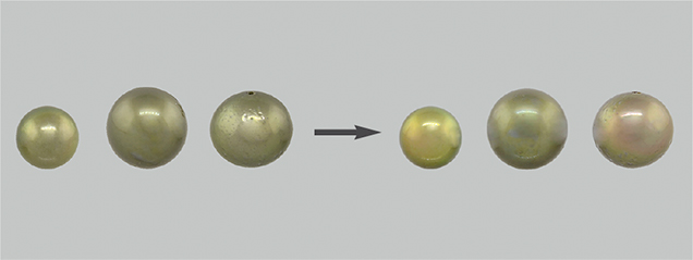 Treated pistachio pearls after immersion in various solvents