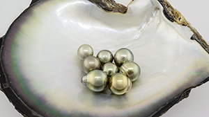 Eight natural-color pistachio pearls
