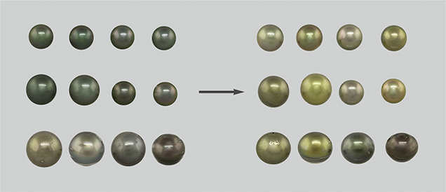 Bodycolors of 12 pistachio pearls before and after color treatment