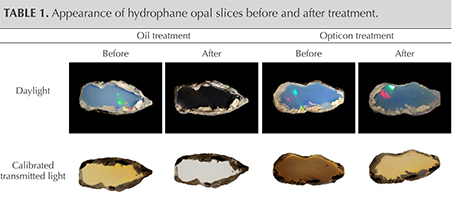 Appearance of hydrophane opal slices before and after treatment