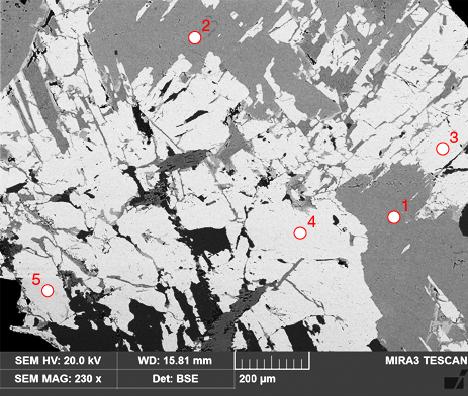 Backscattered electron image of rhodonite/pyroxmangite