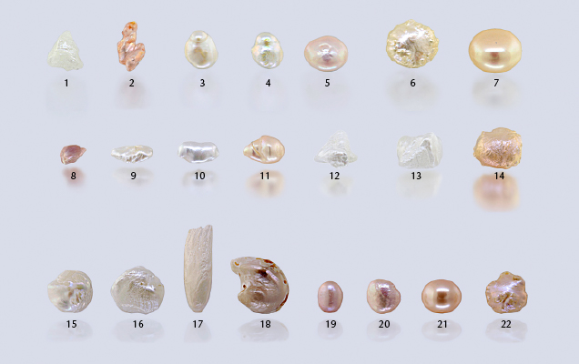 Freshwater pearls used for the blind DNA study.