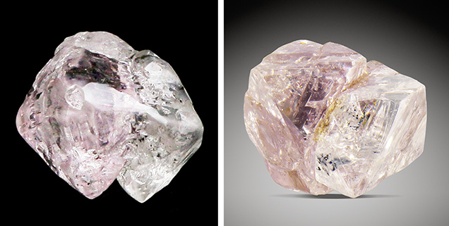 Rough diamond crystals exhibiting both pink and colorless sections.