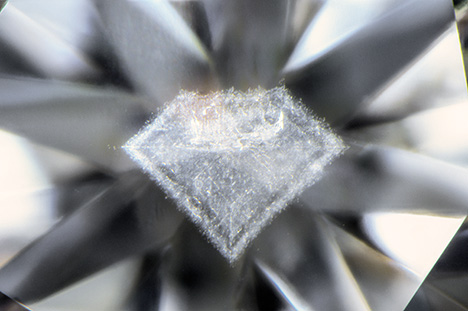 Cloud inclusion resembling the profile of a faceted diamond.