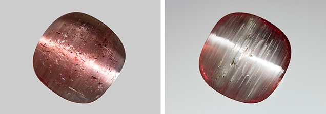 Bicolor tourmaline double cabochon displaying pink and white chatoyant bands on opposite sides.
