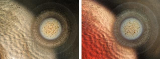 Illuminated growth textures