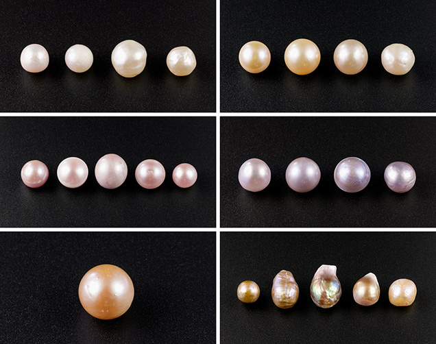 Kasumiga pearls showing a color range of cream, light yellow, pink, purple, orange, and golden with orient.