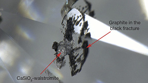 Walstromite inclusion with fan-shaped black fractures.